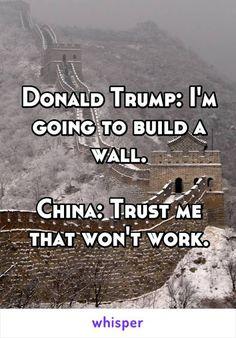WTF Funny Political Meme: Donald Trump, Great wall