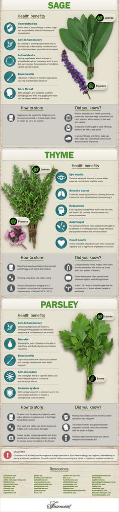 herbs infographic 3