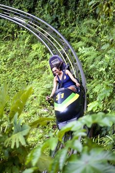 And now I actually want to go to Jamaica! Bobsled through the jungle at Mystic Mountain, Jamaica. Jamaica Resorts, Jamaica Vacation, Jamaica Travel, Vacation Spots, Jamaica Jamaica, Jamaica Honeymoon, Jamaica Ocho Rios, Jamaica Excursions, Jamaica Girls
