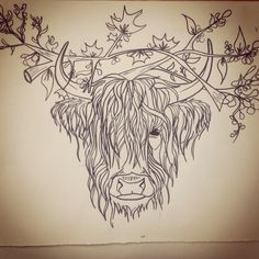 Silly Highland Cow sketch