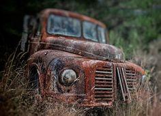 https://flic.kr/p/wRF65L | Trigon Road, Ngahere old truck west coast