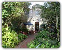 Katjiepiering - Stellenbosch botanical garden - Western Cape - South Africa.