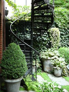 Spiral staircase for the garden :: Brownstone Courtyard NYC :: Townhouse Garden, Garden Stairs, Rooftop Garden, Garden Oasis, Balcony Garden, Terrace, White Gardens, Modern Gardens, Small Gardens