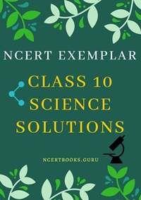 ncert exemplar class 10 maths book pdf download
