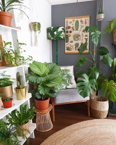 46 DIY Plant Stand ideas to Fill Your Living Room With Greenery These trendy Home Decor ideas would gain you amazing compliments. Check out our gallery for more ideas these are trendy this year. House Plants Decor, Plant Decor, Living Room Plants Decor, Bedroom With Plants, Trendy Home Decor, Diy Home Decor, Decoration Plante, Diy Plant Stand, Plant Stands
