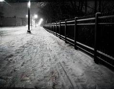 winter winter-wonderland