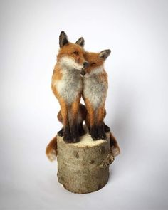 A Selection Of My Needle Felted Sculptures, Celebrating British Wildlife Although I live in beautiful Yorkshire, I rarely manage a glimpse of the wildlife surrounding me. Felt Fox, Felt Bunny, The Animals, Felt Animals, Yorkshire, Needle Felting Tutorials, British Wildlife, Felt Mouse, Felt Christmas Ornaments