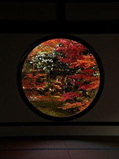 Reflection, Japanese, Nature, Red, Gardening, Windows, Image, Photography, Naturaleza