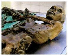 Display of Otzi Ice_Mummy - Otzi the Iceman is well naturally preserved mummy of a man. The man who was been captured in Ice was believed to be over 53 centuries old (3300 BC).