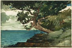 Winslow Homer - Bermuda, 1900 Watercolor on heavy wove paper