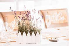 We are Peter and Ivana Miller Wedding Decorations, Table Decorations, Destination Wedding Photographer, Wedding Table, Wedding Venues, Lavender, Table Settings, Candles, Ideas