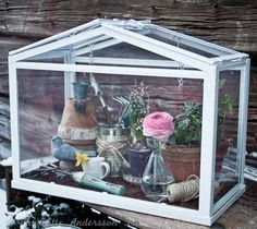 EEEK!! a miniature green house!!! HoW CUTE!!