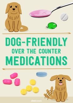 Dog under the weather? We've got a list of dog friendly over the counter medications you can safely give your pet.