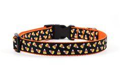 Halloween Dog Collar  1 inch width  Adjustable  by MonicaAnnPets
