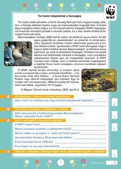 Szövegértést fejlesztő gyakorlatok 3.o. Study, Printables, Education, Dyslexia, Print Templates, Learning, Studio, Exploring, Printable Templates