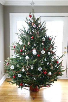 Festive tree by Kate Spain
