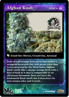 Afghan Kush | Repined By 5280mosli.com | Organic Cannabis College | Top Shelf Marijuana | High Quality Shatter