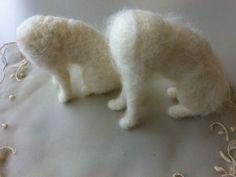 Kattenlijfje