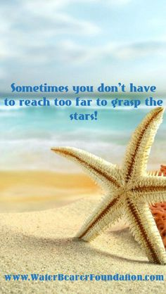 Water Bearer Foundation raises money for Marine Biology scholarships! We do this thru the sales of our shirts and decals! We believe in funding an army of conservationists! Sometimes you don't have to reach far to grasp the stars!  sea stars, starfish, star fish quotes. Quotes about the ocean , beach , and sea! http://www.waterbearerfoundation.com/