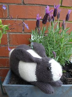 Knit an Easter Bunny! Free Knit Henry's Rabbit Knit Pattern by Sara Elizabeth Kellner