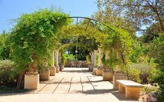 Jardin Antique Mediterranéen  des Thermes de Balaruc-les-Bains ©H. Da Costa Office de Tourisme de Balaruc-les-Bains