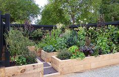 A contemporary sustainable vegetable garden ~ designed by Rach Matthews, HEDGE Garden Design & Nursery