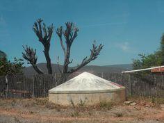 Scenario drought by Escritor Emanuel Carvalho
