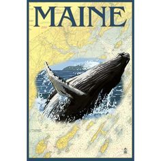 ME Humpback Whale and Nautical Chart - LP Artwork (Light Switchplate Cover)