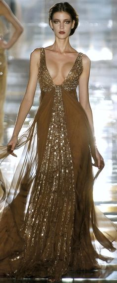 Elie Saab/ I really like this dress but I dislike the plunge and how much cleavage is shown