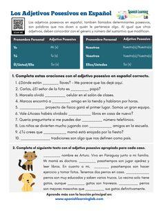 31 Adjetivos Posesivos Ideas In 2021 Possessive Adjectives Teaching Spanish Learning Spanish