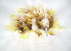'Echidna' painting by Michael Cain- Gnashing Teeth (gnashingteeth)