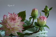 Sugar Flower Artistry by Eugenie Skalosub