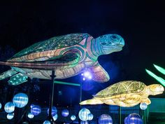 Vivid Sydney 2017: The essential guide | Daily Telegraph