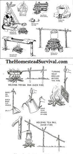 More Survival