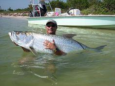 Tarpon! Fort Myers Beach, Florida