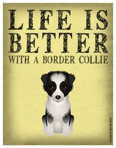Life is Better with a Border Collie Art Print - Custom Dog Print I Love Dogs, Puppy Love, Cute Dogs, Border Collie Art, Collie Dog, Dog Pin, Crazy Dog, Dogs And Puppies, Doggies