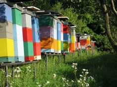 Multicoloured man-made Beehives!