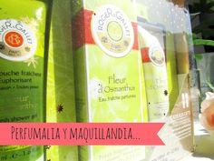 El Espejo de la BELLEZA: Perfumalia y Maquillandia...Cosmética de farmacia ...