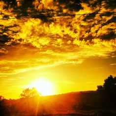 The sun always rises in my own garden
