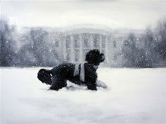 See The White House ChristmasCard  Starring Bo, the administration's vessel of holiday glee.