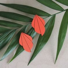 FAUNA earrings have been inspired by tulips and their stunning color scheme. Sustainable Fashion, Tulips, Orange Color, Jewelry Collection, Color Schemes, Plant Leaves, Summer Outfits, Earrings, Plants