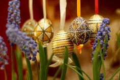Free pictures modern Pysanka From www.tOrange.us #Spring #Orthodoxy #Christianity #holiday #Sunday #Christian #Easter #Easter #god #decoration #Temple #Easter #Egg #cloth #flower #Flowers #muscari #Mouse #hyacinth #Easter #egg #Eggs