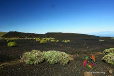 Volcán de Fasnia  #landscape #hiking #hike #outdoors #senderismo #trekking #islascanarias #paisajes #españa #tenerifesenderos