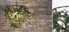 mini_foresti_iron.png