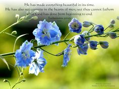 Free Christian Pictures with Verses   Christian Desktop Images Free- Landscape Photos with Bible Verses