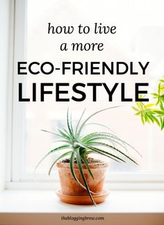 How To Live A More Eco-Friendly Lifestyle - The Blogging Brew