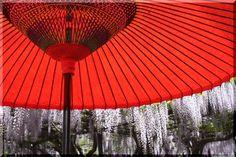 Japanese umbrella #umbrella #parasol #Japan