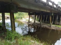 View of the substructure of the Currey Creek Bridge