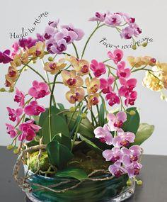 Un delicado y hermoso centro de mesa realizado con orquídeas, y lo mejor es que puedes hacerlo tú misma!