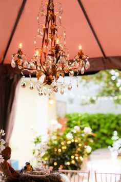Love how this chandelier makes everything look more elegant!